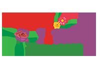 Zimbali flowers